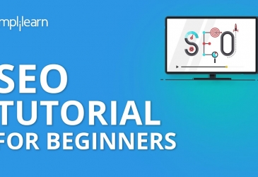 SEO Tutorial For Beginners | Learn SEO Step By Step | SEO Tutorial